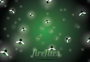 Fundo do vetor Firefly