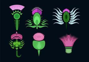 Various Thistle Flower Vector