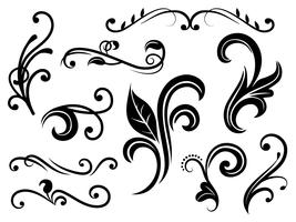 Flourishes Vectors
