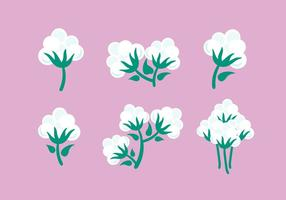Vector de la planta de algodón