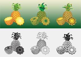 vettore di ananas