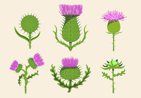 Free Thistle Vector