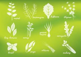 Vecteurs de verts frais