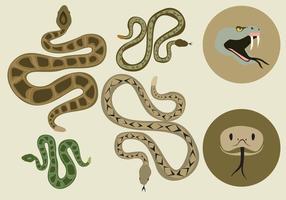 Gratis Rattlesnake Vector