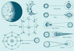 Old Style Draw Moon Phase Vectors