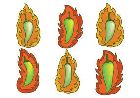 Green Hot Pepper Vectors