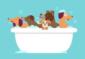 Hund tvätt vektor