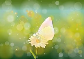 Butterfly Hijau Background Vector