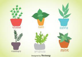 Vettore delle piante delle spezie e delle erbe