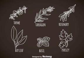 Herbs And Spices Leaves Vectors