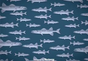 Barracuda Background