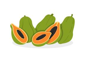 Papaya Vectors