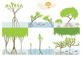 Vetor de ecossistemas de manguezais