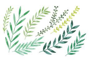 Vector Watercolor Leaves