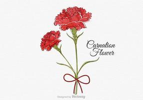 Fiore di garofano acquerello vettoriale gratuito