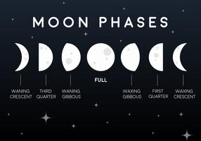 Iconos planos de la fase de la luna del vector