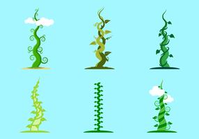 Free Beanstalk Vector
