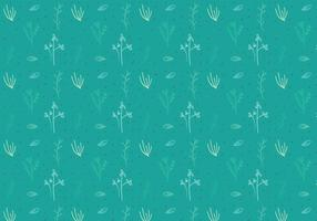 Free Thyme Vector Graphic 4