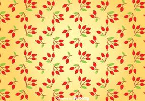 Rosehip Background