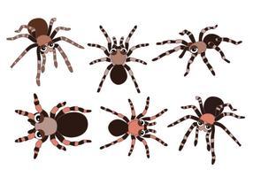 Tarantula vektorer