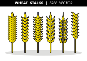 Wheat Stalks Free Vector