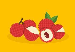 Lychee Vector Fruit