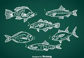 Vector desenhado à mão de peixe