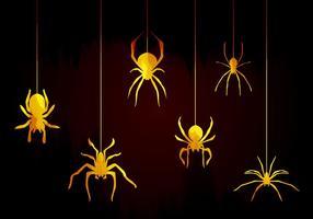 Tarántula Arañas Vector
