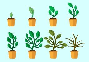 Grow Up Plants Vector