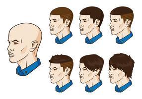 Les cheveux vectoriels grandissent