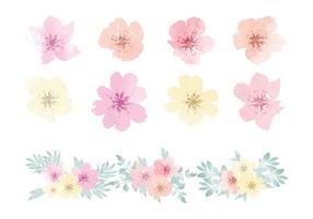 Elementos de flores hawaianas de la acuarela del vector