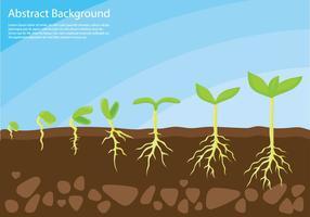 La pianta cresce sul vettore di concetto