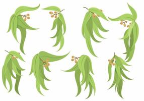 Eucalyptus Icon Set