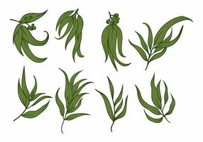 Eukalyptus Icon Set
