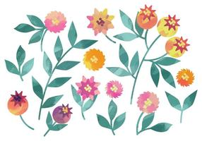 Vector Watercolor Rosehip Elements