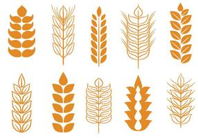 Free Wheat Stalk Vectors