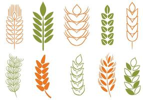 Free Wheat Stalk  2 Vectors