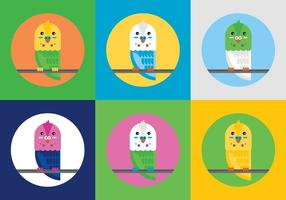 Free Budgies Vector Illustrations