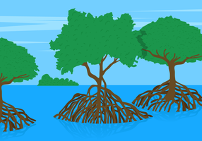 Mangrove Tree Vector Lanscape