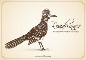 Gratis Vektor Drawn Roadrunner Illustration