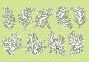 Ícones do vetor de eucalipto
