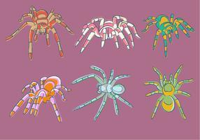 Sketchy Tarantula Vektor
