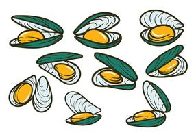 Mussel Vector Handdrawn