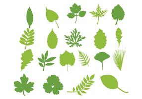 set di foglie vettore hojas