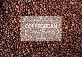 Coffee Bean Background Texture vector