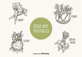 Doodle-drawn-root-vegetables-vector