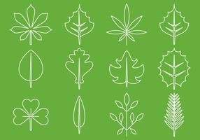 Leaves Line Icons vector