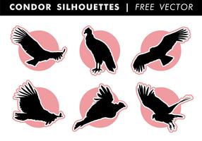 Cóndor siluetas vector libre