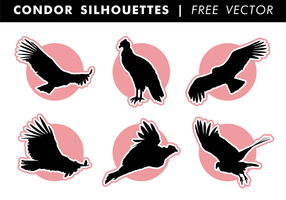 Condor Silhouettes Free Vector