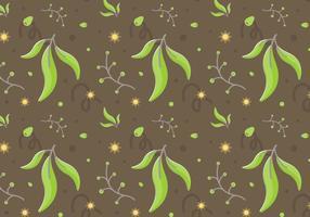 Freier Eukalyptus Vektor 2